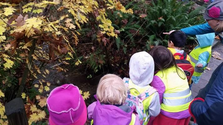 broadvievw co-op preschool carkeek park